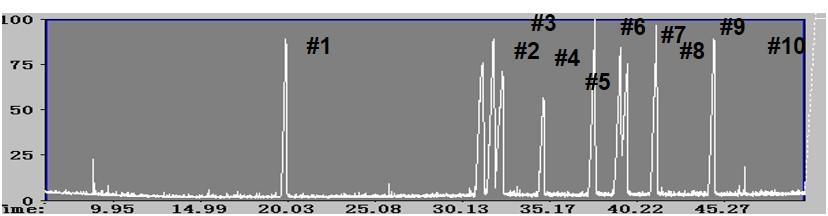 GC/MSによる分析 液晶のTIC