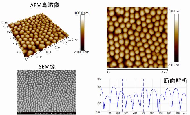 ナノインプリントフィルムの表面観察(SEM像、AFM鳥瞰像、断面解析)