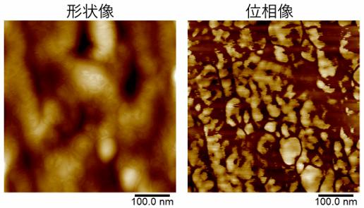 PC/ABSブレンドポリマーの形状像と位相像