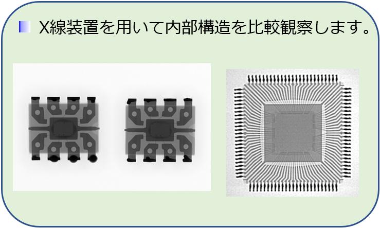 X線装置を用いて内部構造を比較観察します。