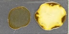 原料の硬化部と変色部
