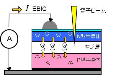 EBIC解析の原理