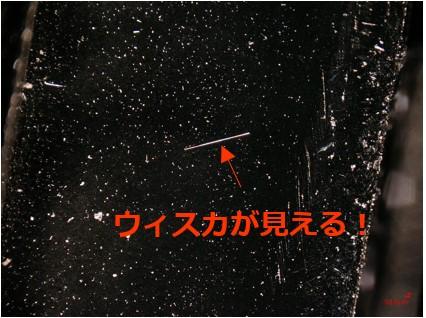図4 サンプル右回転(外部光源)
